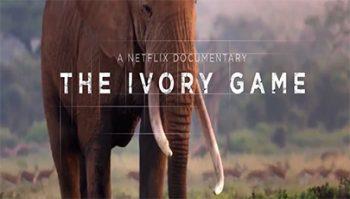 دانلود فیلم مستند The Ivory Game 2016