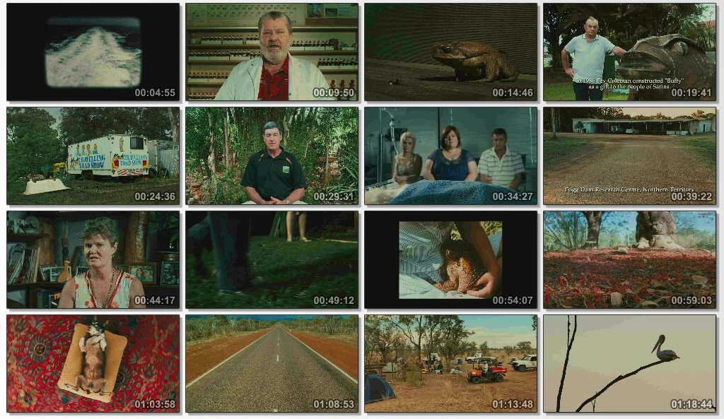 دانلود فیلم مستند Cane Toads The Conquest 2010 با کیفیت 720p BluRay