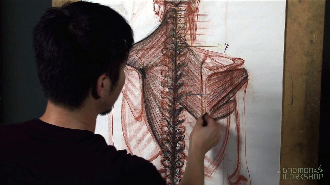 Anatomy.Workshop-Image3-www.download.ir