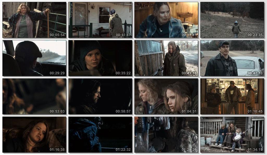 دانلود فیلم سینمایی Winters Bone 2010
