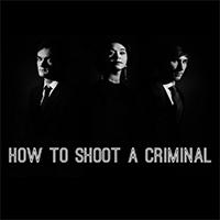 دانلود بازی کامپیوتر How to shoot a criminal نسخه PLAZA