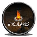 دانلود بازی کامپیوتر Woodlands