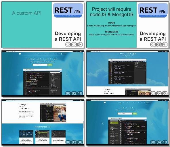 دانلود دوره آموزشی Starting with REST API's از Udemy
