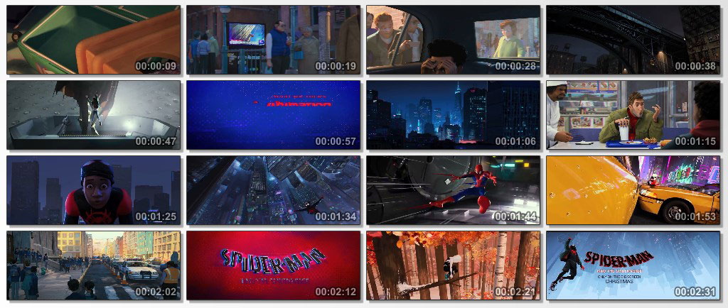 Spider Man Into the Spider Verse - Screen