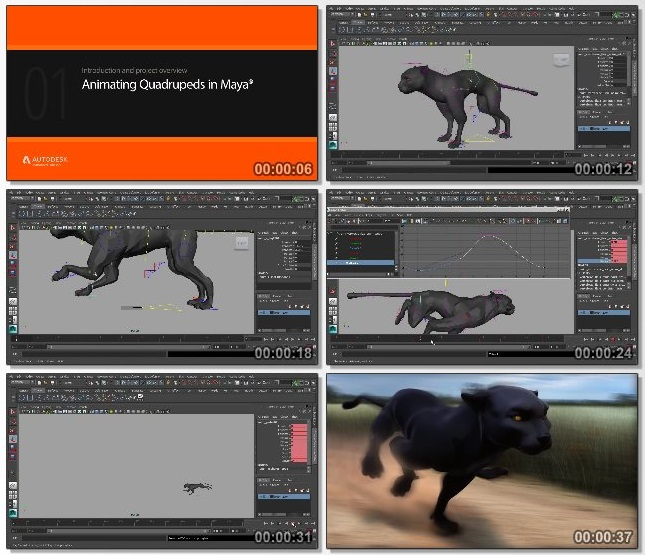 دانلود فیلم آموزشی Animating Quadrupeds in Maya از pluralsight