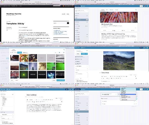 Calypso For Speedy WordPress Site Management center