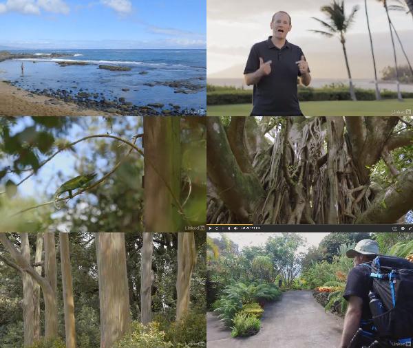 Landscape Photography: Tropical Scenes center