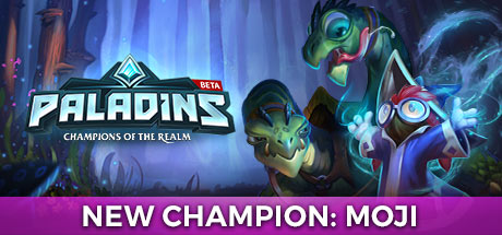 Paladins Champions of the Realm center