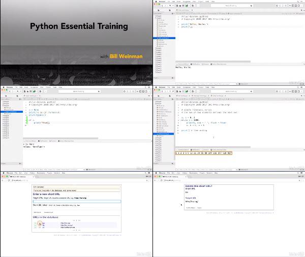 Python Essential Training center