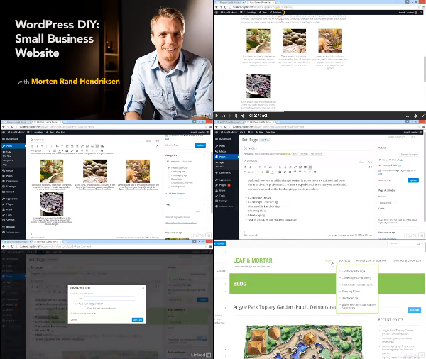 WordPress DIY: Small Business Website center