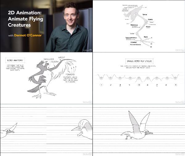 2D Animation: Animate Flying Creatures center