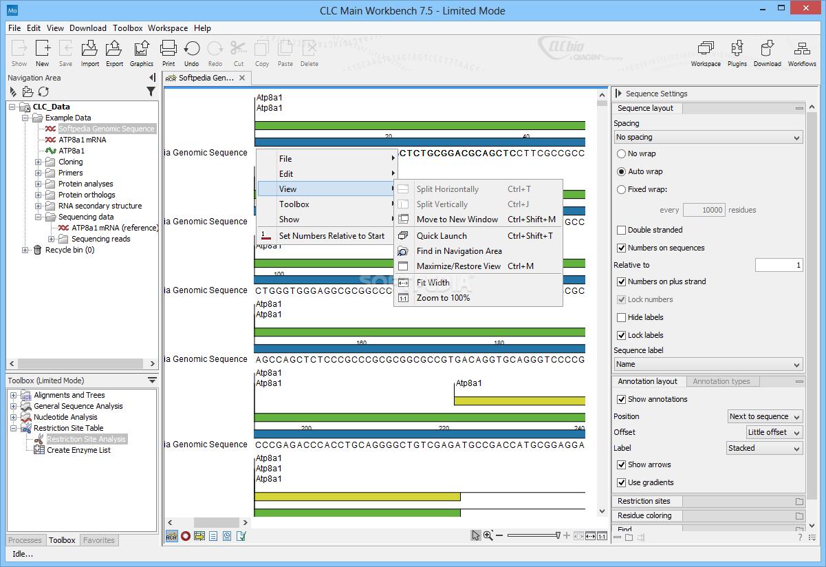 Clc Workbench Download