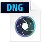 Adobe.DNG.Converter.logo