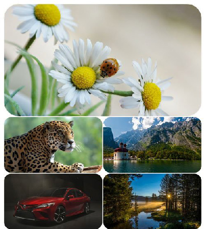 Beautiful Mixed Wallpapers Pack 5 center