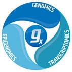CLC Genomics Workbench logo