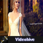 Videohive Wedding Photos logo