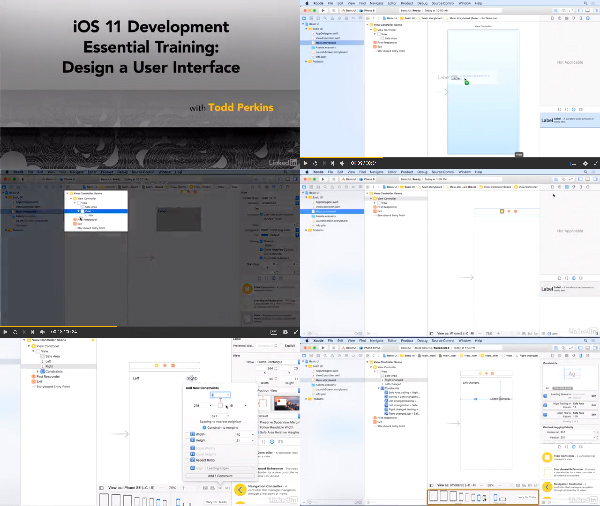 iOS 11 Development Essential Training: Design a User Interface center