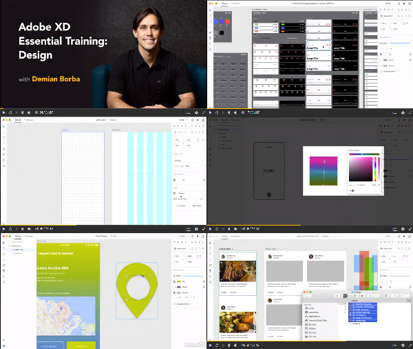 Adobe XD Essential Training: Design center