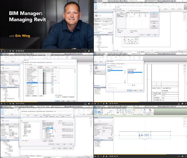 BIM Manager: Managing Revit center