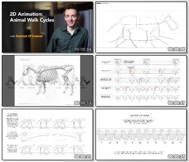 دانلود فیلم آموزشی 2D Animation: Animal Walk Cycles از Lynda