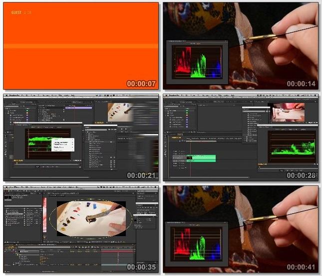 دانلود فیلم آموزشی Mastering Color Correction in Premiere Pro
