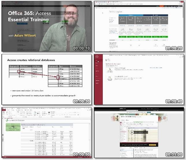 دانلود فیلم آموزشی Office 365: Access Essential Training از Lynda