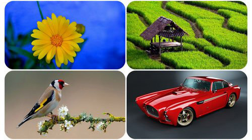 Beautiful Mixed Wallpapers Pack 36 center