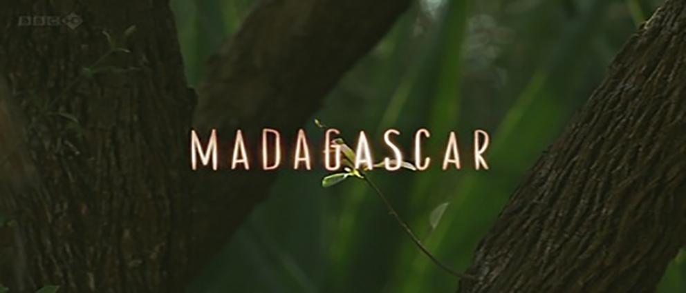 Madagascar.2011.www.download.ir