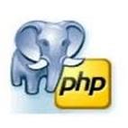 PostgreSQL PHP Generator Professional logo