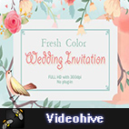 Videohive Fresh Color Wedding Invitation logo