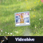 Videohive Photo Gallery - Our Happy Day logo