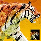 Plasticum – Polygonal Art Photoshop Action logo