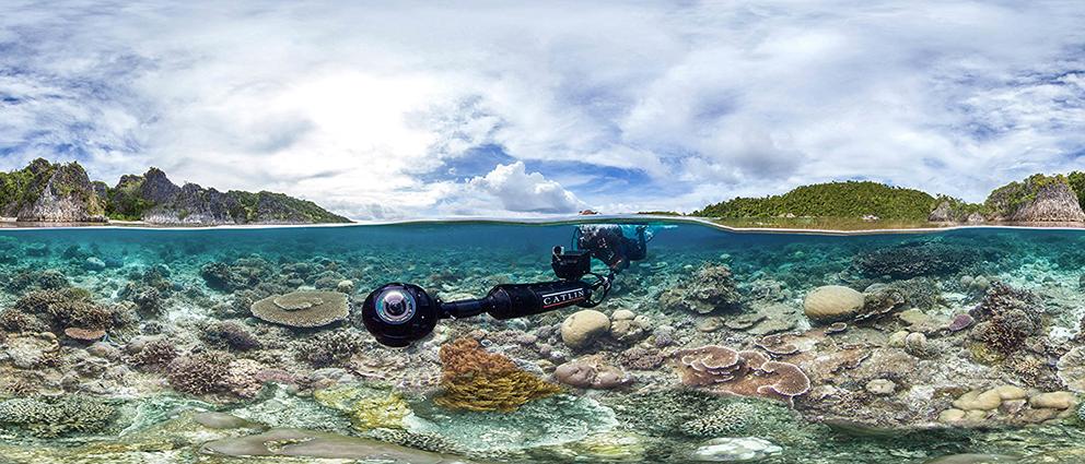 Chasing Coral (2017).www.download.ir