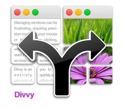Divvy center