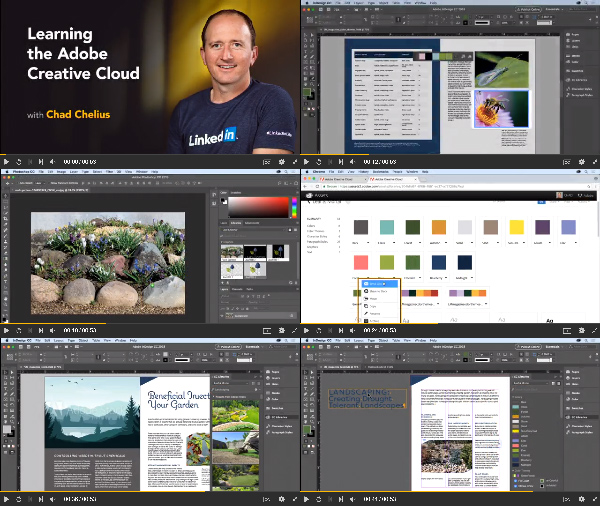 Learning the Adobe Creative Cloud center