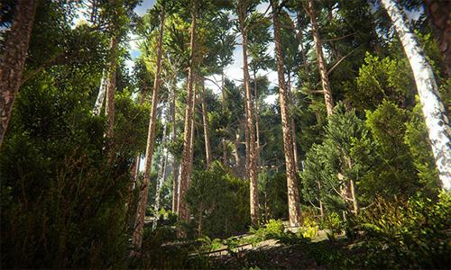 Unity Asset – Realistic Nature Environment v1.2 center