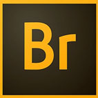 Adobe.Bridge.CC.2019.logo_.www_.download