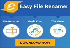Easy File Renamer center