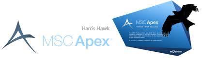 MSC Apex Harris Hawk centerr