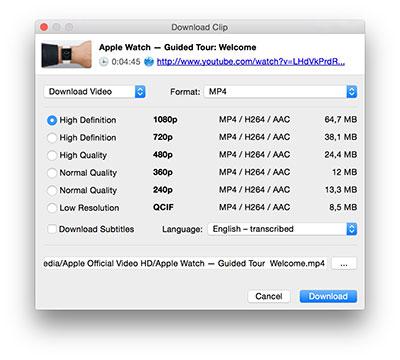 دانلود برنامه ی 4k video downloader