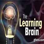 دانلود فیلم آموزشی The Learning Brainدانلود فیلم آموزشی The Learning Brain