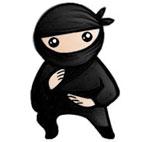 System.Ninja.logo