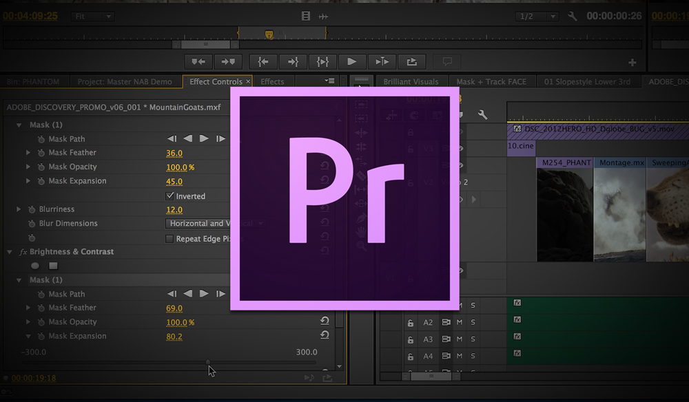 Adobe.Premiere.Pro.CC.center