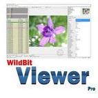 WildBit Viewer logo www.download.ir