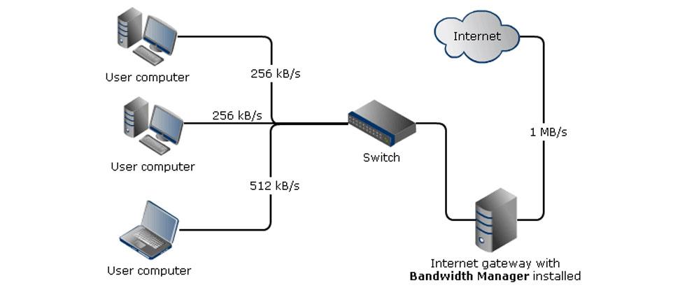 Bandwidth manager hardware