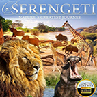 Serengeti Natures Greatest Journey 2015