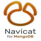 www.download.ir Navicat for MongoDB logo