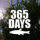 365 Days Icon