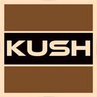 Kush.Audio.logo عکس لوگو