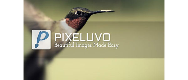 Pixeluvo.center عکس سنتر